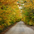 Colorful country road — Stock Photo