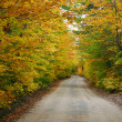 Colorful country road — Stock Photo #7529267