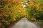 Kleurrijke landweg — Stockfoto