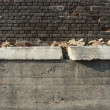 Partially demolished concrete and brick worn industrial wall — Stock Photo