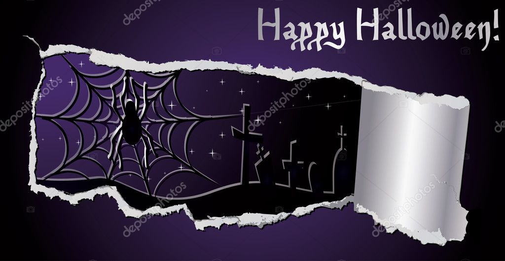 Halloween banner with spiderweb, vector illustration — Stock Vector #6980850