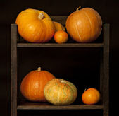 Display of pumpkins in a kitchen shelf. — Стоковое фото