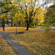 Autumn in the park. — Stock Photo