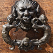 Doorknocker. — Stockfoto #7443566