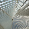 Liege-Guillemins railway — Stock Photo #6772332