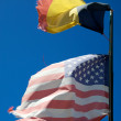 Stock Photo: US Friendship Flag Pin - Belgium