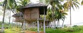 Paradise in kerala — Stock Photo