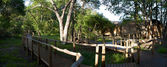 Lodge in Moremi Game Reserve — Stock Photo