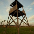 Auschwitz-Birkenau Concentration Camp — Stock Photo #7362145
