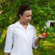 Doctor With Apple — Stock Photo