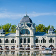 Stock Photo: Rink in Budapest in summer