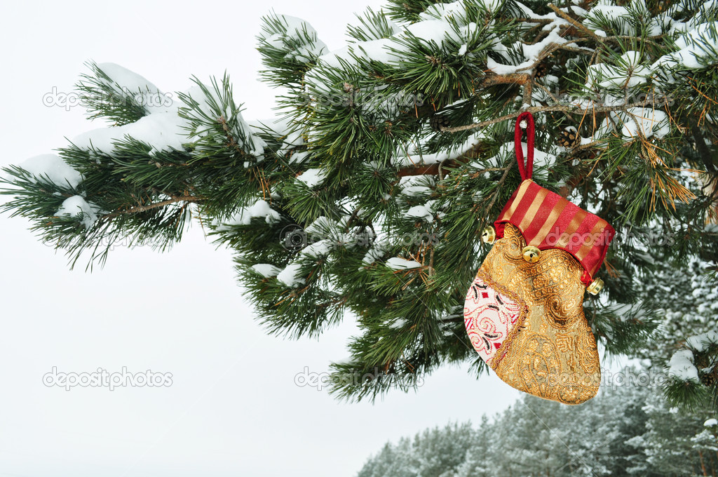 Gift Packaging,  Christmas Stock and Tree, colorful sock hanging on a branch with snow in the coniferous forest, brown, bright color — Stock Photo #7177400