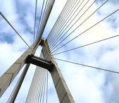 Cable-stayed bridge — Stock Photo