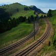 Tram tracks in Switzerland - Stock Photo