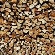 Log pile - Stock Photo