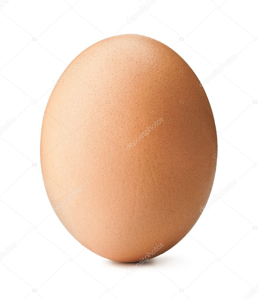 Brown egg on white background  Stock Photo #6905708