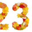 图库照片: Numbers 2 and 3 made of autumn leaves