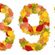 Foto Stock: Numbers 8 and 9 made of autumn leaves