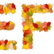 Characters E and F made of autumn leaves — Stock Photo