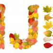 Stockfoto: Characters I and J made of autumn leaves