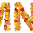 Stockfoto: Characters M and N made of autumn leaves