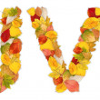Stockfoto: Characters U and V made of autumn leaves
