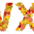 Stock Photo: Characters W and X made of autumn leaves