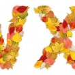 Foto de Stock  : Characters W and X made of autumn leaves