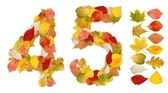 Numbers 4 and 5 made of autumn leaves — Stock Photo