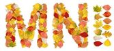 Characters M and N made of autumn leaves — Stock Photo