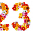 Numbers 2 and 3 made of various flowers — Stockfoto