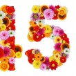 Numbers 4 and 5 made of various flowers — Stockfoto