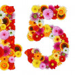 Stockfoto: Numbers 4 and 5 made of various flowers