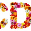 Characters C and D made of various flowers — Stock Photo