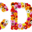 Characters C and D made of various flowers — Stockfoto #7390445