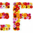 Characters E and F made of various flowers — Stock Photo