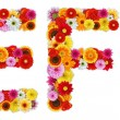 Foto Stock: Characters E and F made of various flowers