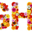 Characters G and H made of various flowers — Stock Photo