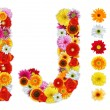 Stockfoto: Characters I and J made of various flowers