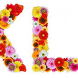 Foto de Stock  : Characters K and L made of various flowers