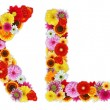 Characters K and L made of various flowers — Stock Photo
