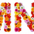 Foto de Stock  : Characters M and N made of various flowers