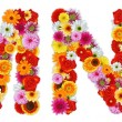 Stock Photo: Characters M and N made of various flowers