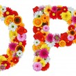 Characters O and P made of various flowers — Stockfoto #7390513