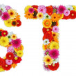 Stock Photo: Characters S and T made of various flowers