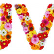 Characters U and V made of various flowers — Stockfoto #7390549