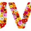 Characters U and V made of various flowers — Stock Photo