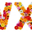 Foto Stock: Characters W and X made of various flowers