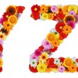 Characters Y and Z made of various flowers — Stock Photo