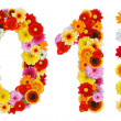 Foto Stock: Numbers 0 and 1 made of various flowers